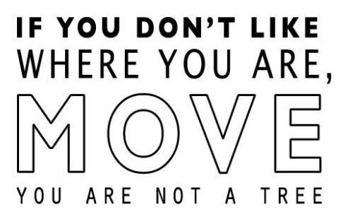unique-moving-day-funny-quotes-260-best-inspirational-quotes-images-on-pinterest.jpg