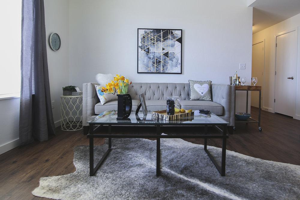 livingroom1 -2.jpg