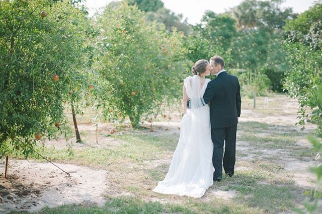 Claire & Zach | portraits in an orange grove 🍊🌳doesn't get more Floridian than that! #desireedawnevents favorite moment captured by @sheachristinephoto & featured on @floridiansocial #outdoorweddings #backyardweddingplanner #welovenature #floridaoranges
