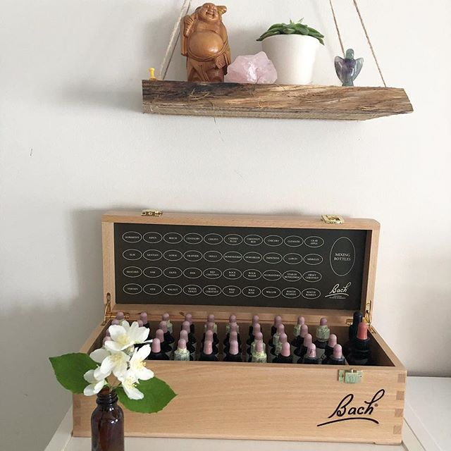 Bach Flower Remedies - nature's own medicine to help us heal our emotions 🌼❤️ ⠀⠀⠀⠀⠀⠀⠀⠀⠀ ⠀⠀⠀⠀⠀⠀⠀⠀⠀ ⠀⠀⠀⠀⠀⠀⠀⠀⠀ ⠀⠀⠀⠀⠀⠀⠀⠀⠀ #parfaitnotperfect #lifecoachforwomen #heartcentred #vulnerability #gratitudepractice #proudfeminist #womenonamission #coachlife #womenscircle #creativeliving #wholeheartedliving #belonging #emotionalwellbeing #womensupportingwomen #togetherwerise #boldbraveyou #connection #daringgreatly #lifeonpurpose #comehometoyourself #empoweredwomen #powerfulwomen #psychology #kinesiology #bachflowerremedies #emotionalhealing #inspiredbynature