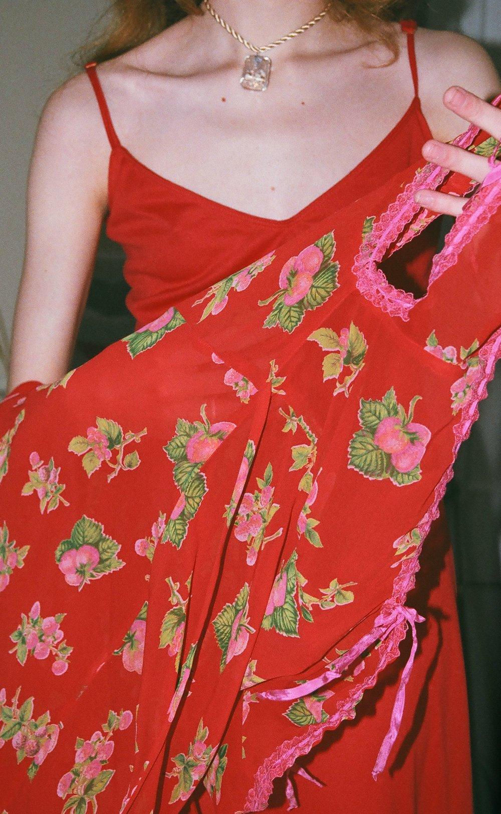 strawberry dress 2.jpg