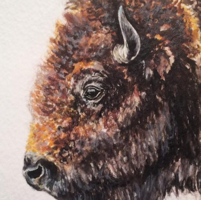 TATANKA   PRINTS AVAILABLE