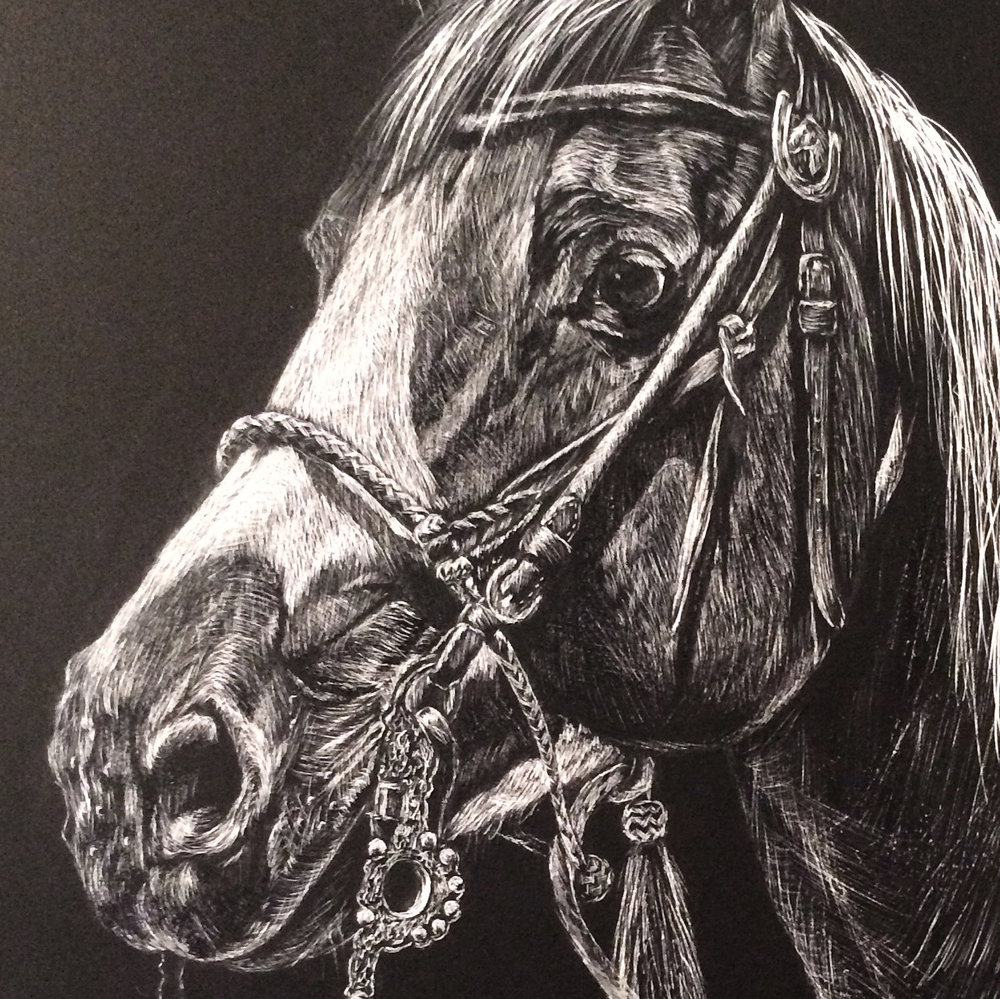 KEDDA BRIDLED   PRINTS AVAILABLE