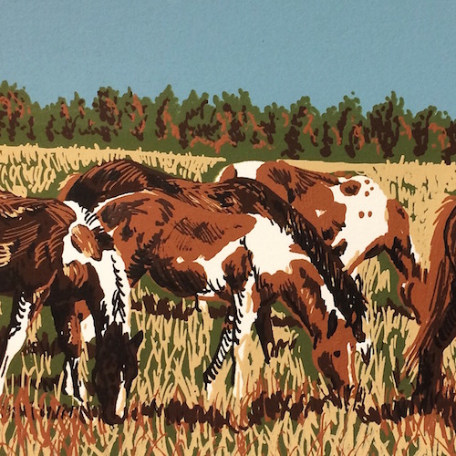 PRINTED PAINTED PONIES   PRINTS COMING SOON
