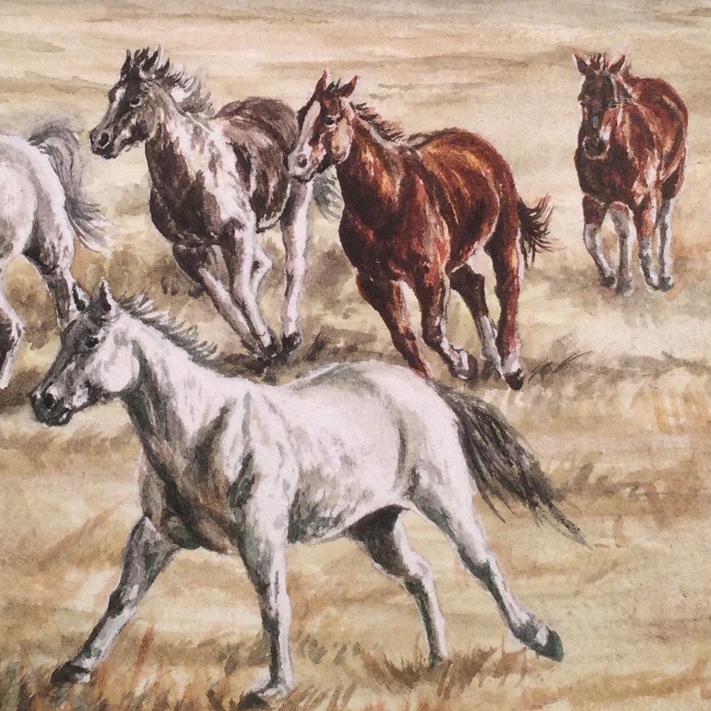 MARES ON THE MOVE    PRINTS AVAILABLE