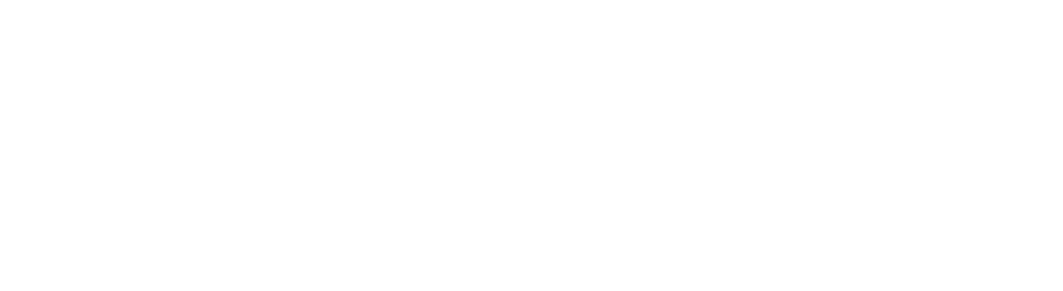 point vision consulting group