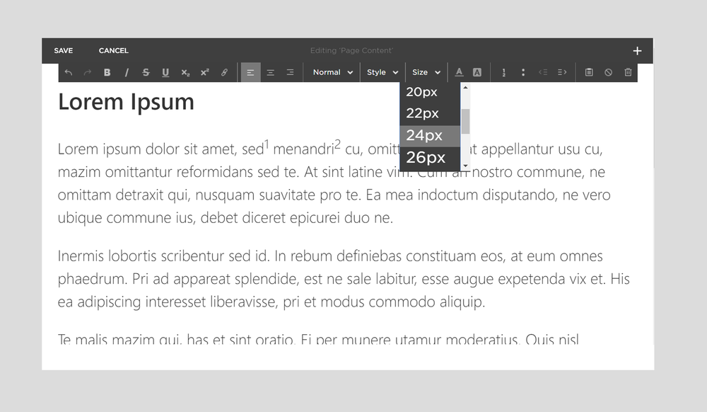 squint-custom-font-sizes-for-squarespace.png