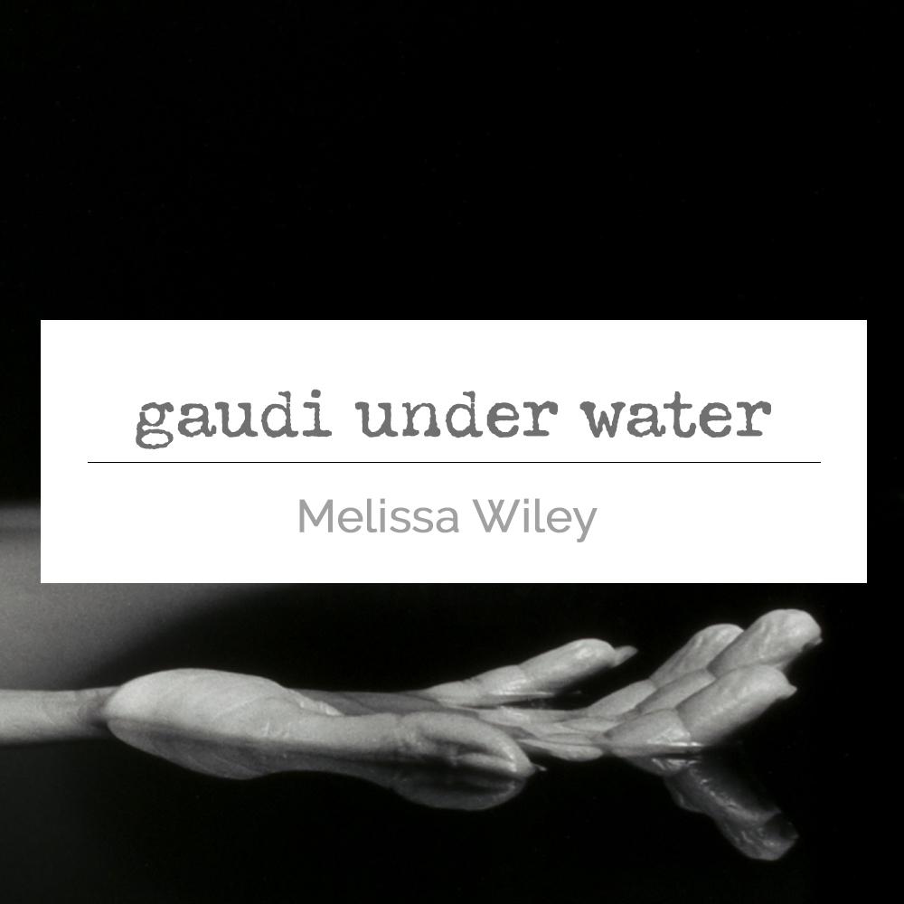 Gaudi Under Water_tile.jpg