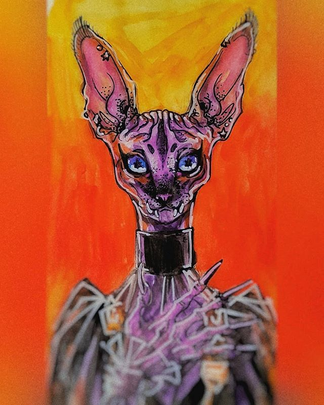 Airplane doodle, maybe I'll paint this again more seriously? . #sphynx #sphynxcat #doodle #illustration #watercolor #watercolorsketch #sketch #sketchbook #slc #spooky #witchy #anthropomorphic #halloween #halloweeneveryday