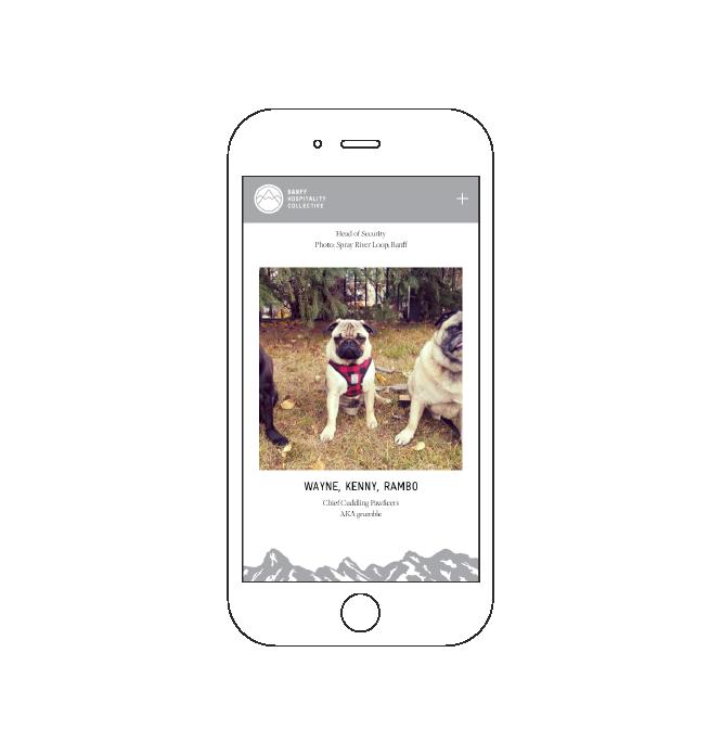 BHC-Mobile-Doggo.png