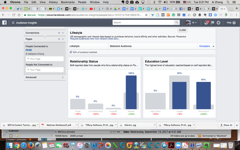 Facebook Audience Insights (image 2)