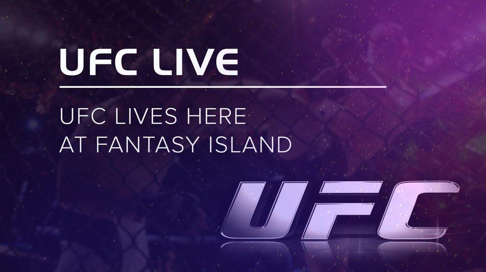 UFC 2-min.jpg