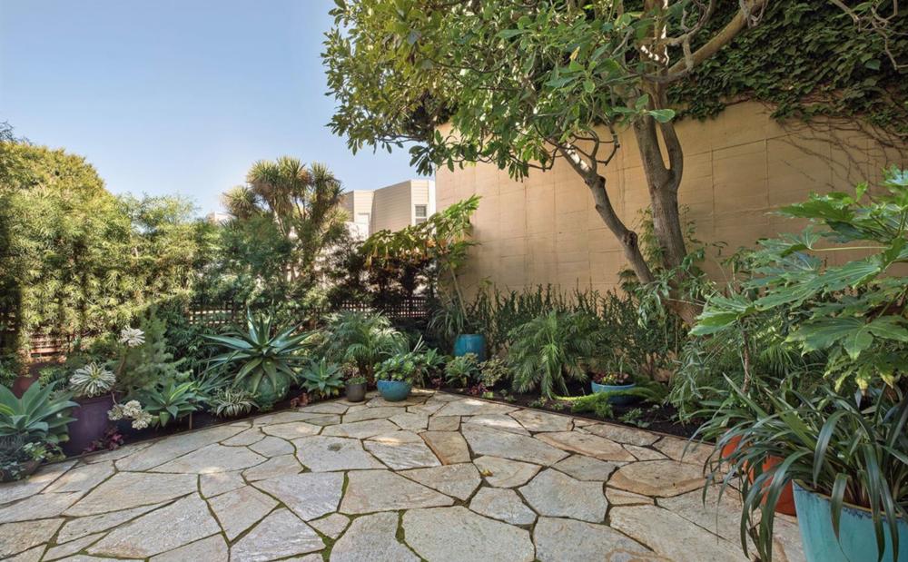 2828 Pierce Street - Backyard