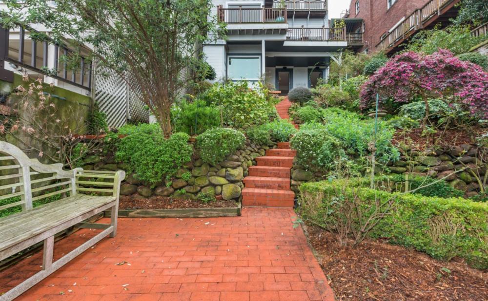 2186 Vallejo Street - Backyard