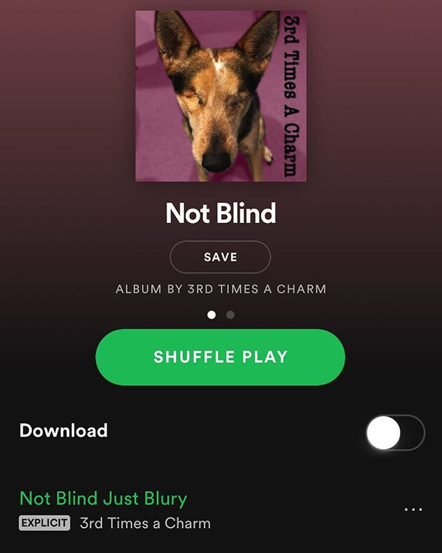Our new Ep Not Blind is out on all your favorite music apps! Stream it to your hearts content! #newmusic #spotify  #music #show #band #poppunk #punk #punkrock #newjersey #family #friends #phillymusic #philly #southjersey #localmusic #supportlocalmusic #localband #3tac