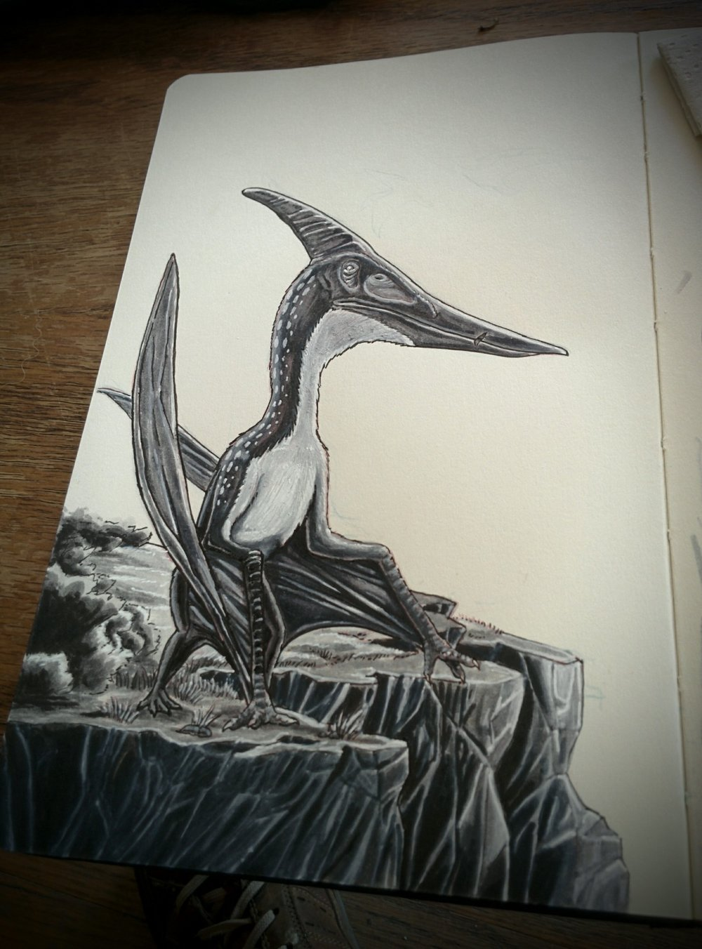 A little Pteranodon art to brighten your day.