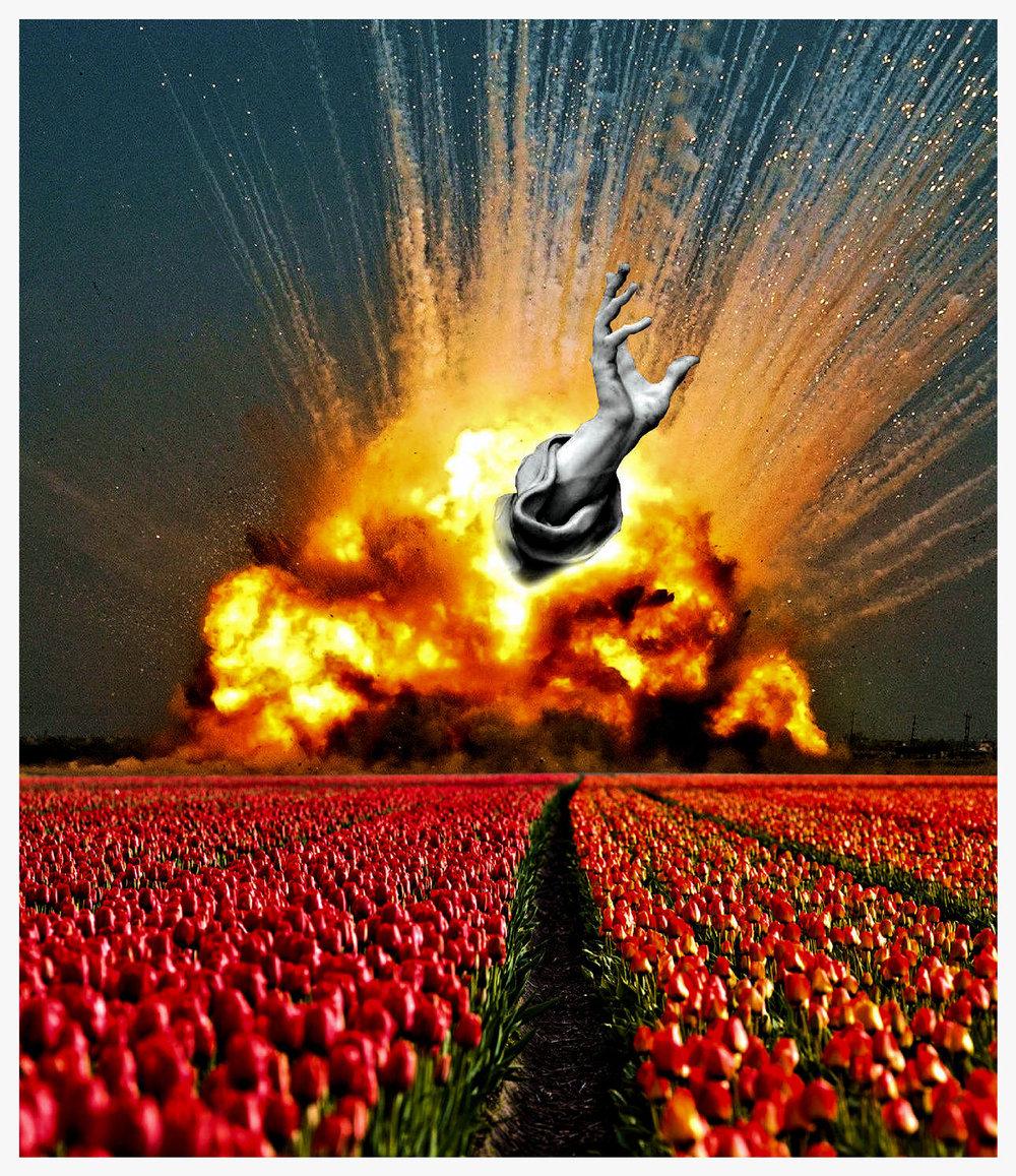 poppy field apocalypse smaller.jpg