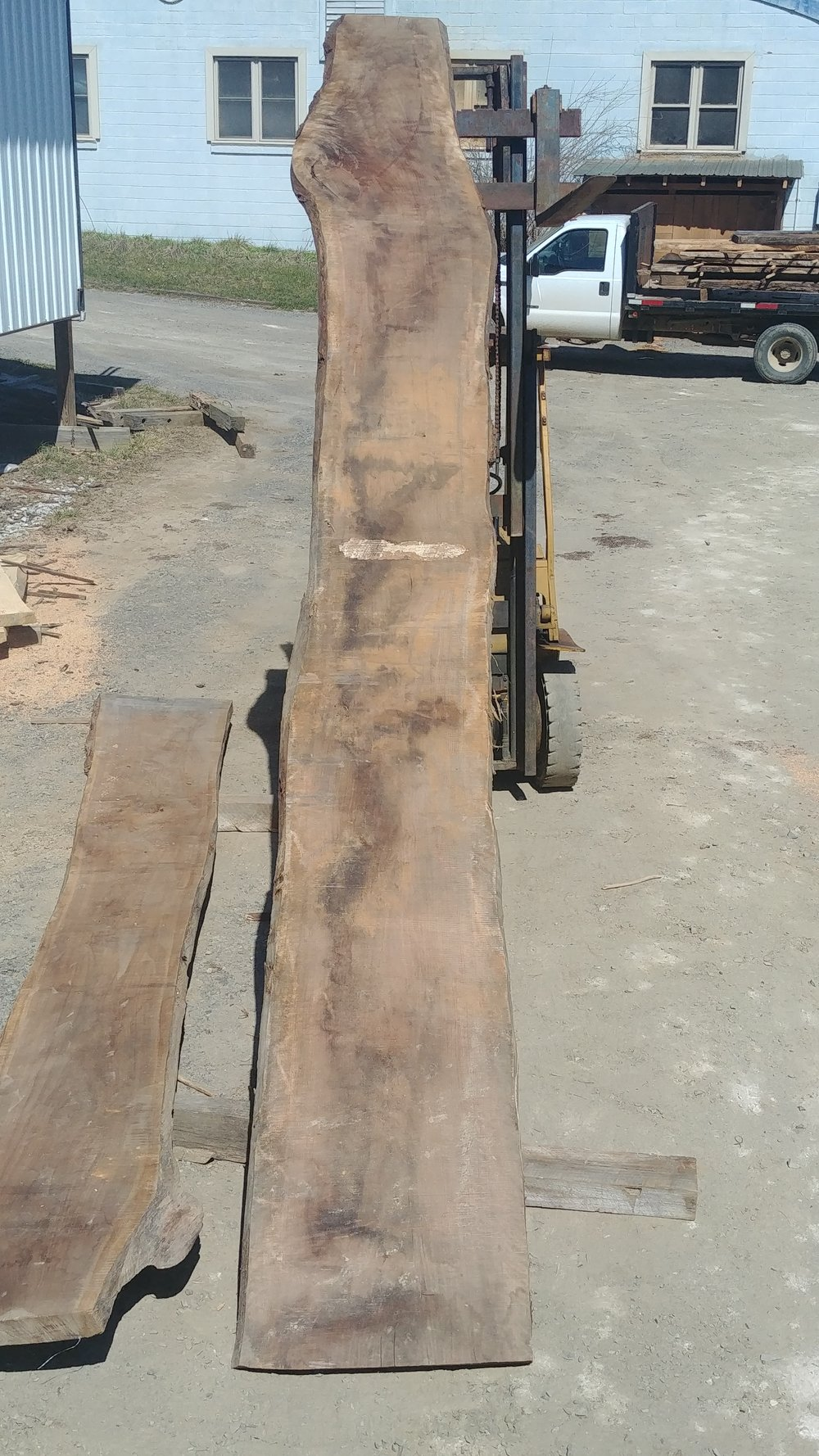 $1100 - 6/425-26 inches widelight curl15 feet long2 knots