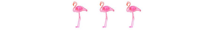 Flamingle.jpg