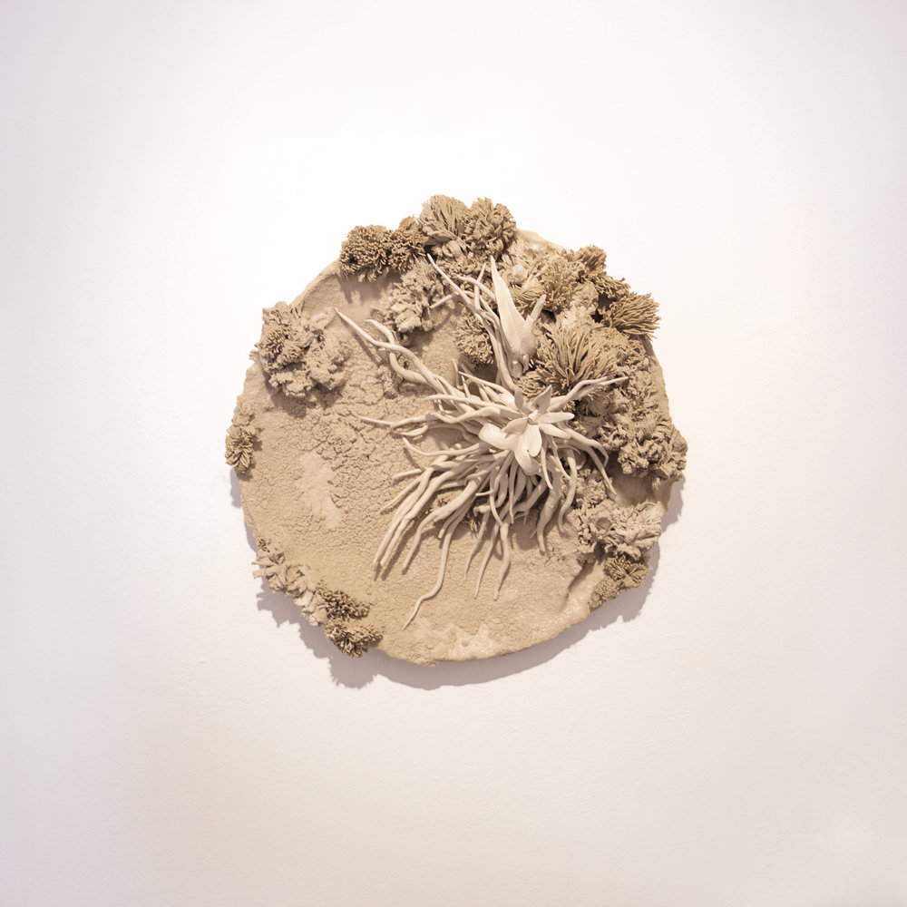 Phoebe Cummings 'Ghost Plate'
