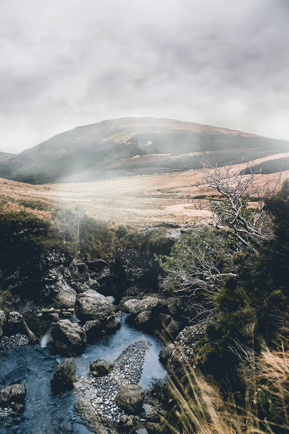 Highlands-4.jpg