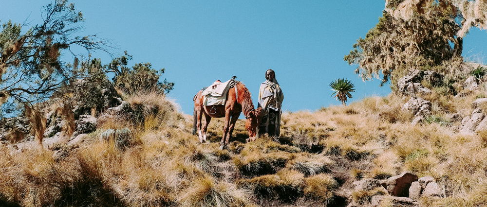 Simien Mountains, Gondar