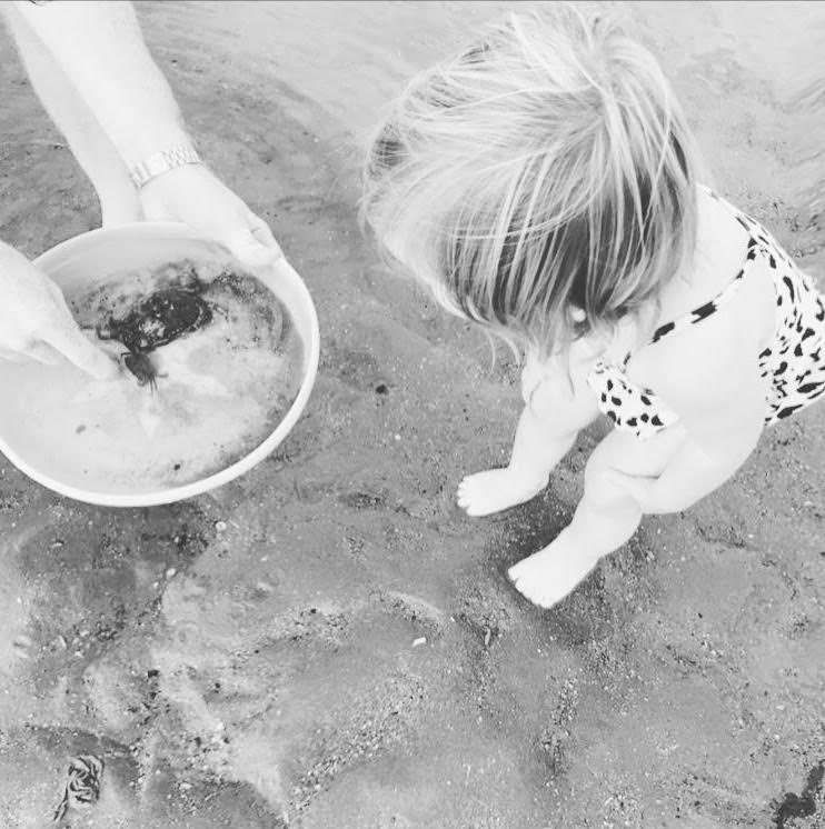 Finding baby crabs at Old Hunstanton