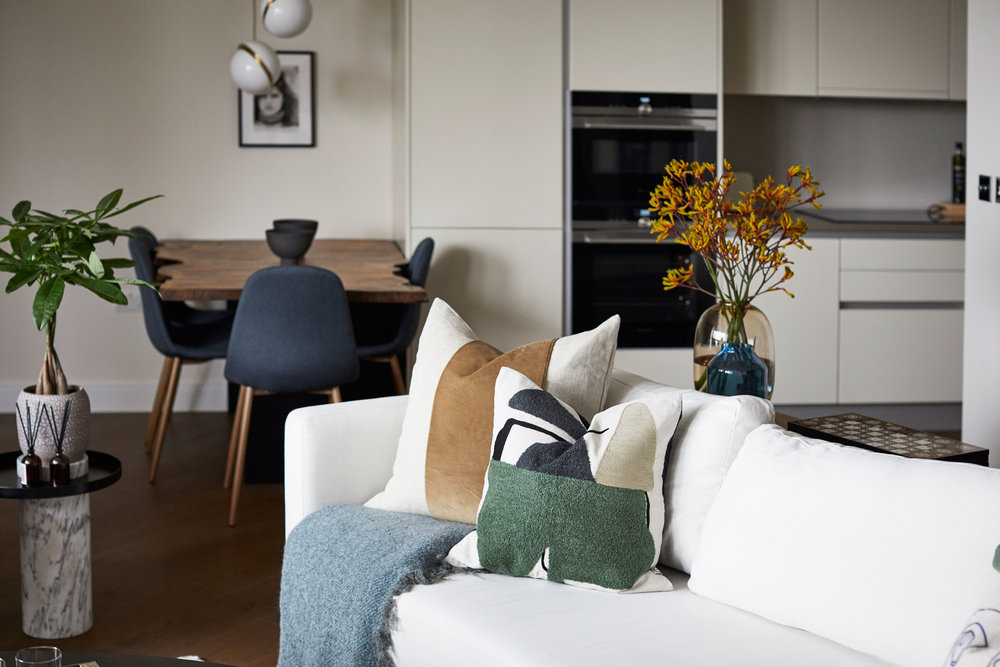 Living Room Battersea Modern Apartment