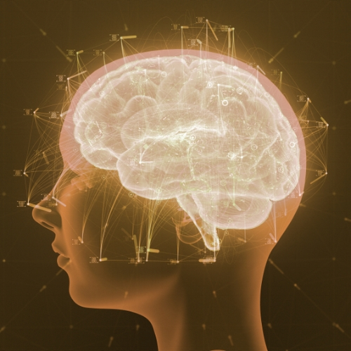 NEUROSCIENCE & PSYCHOLOGY -