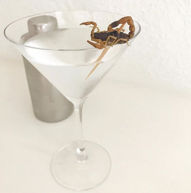 Because Mondays are boring. 🦂 . . . . . . #skorppiovodka #vodka #scorpion #scorpio #shot #liquor #smooth #5timesdistilled #cocktails #drinks #bartender #happyhour #nightclub #bar #tipsy #tipsybartender #wswa #tgif #rndc #southernwineandspirits #domeq #wineandspirits #nabca #cocktailhour #cocktailgramhh #mondays #boring