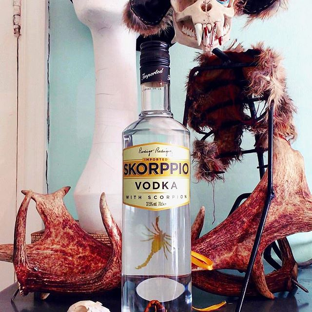 We love to see your adventures with Skorppio Vodka. Please hashtag #iatethescorpion and tag us for a chance to be featured. 📷 @agiftfromgerty . . . . . . . . . . #skorppiovodka #iatethescorpion #vodka #organic #college #drinks #bartender #tipsy #weekend #cheers #scorpio #scorpion #happyhour #shots #happyhour #shots #qualitycocktails #cocktailparty #bar #thirsty #liquor #instabar #cocktails #bizaarfoods #weird #adventurous #insects #protein