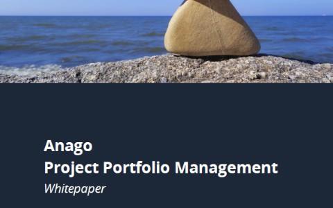 Whitepaper Project Portfolio Management
