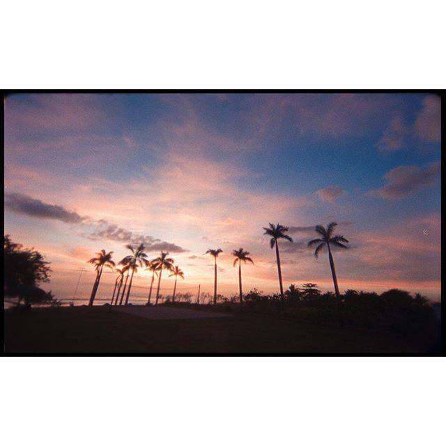 Far South frames | feat. @madisonlawlor | 250D