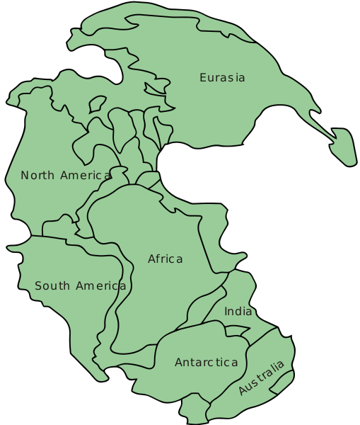 Map of Pangea, circa 300 million years ago ©Wikimedia Commons  Wikipedia