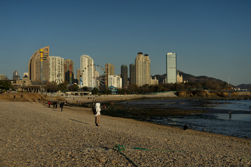 Xinghai Park / 星海公园