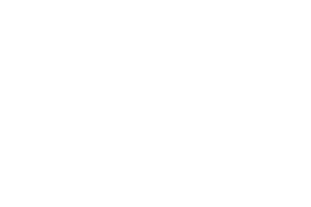 restaurant reality amelia.png
