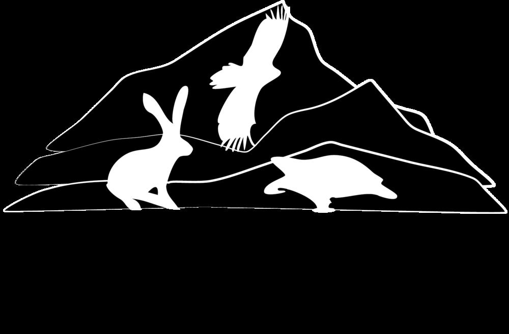 Wildcare-Logo_flat_black.png
