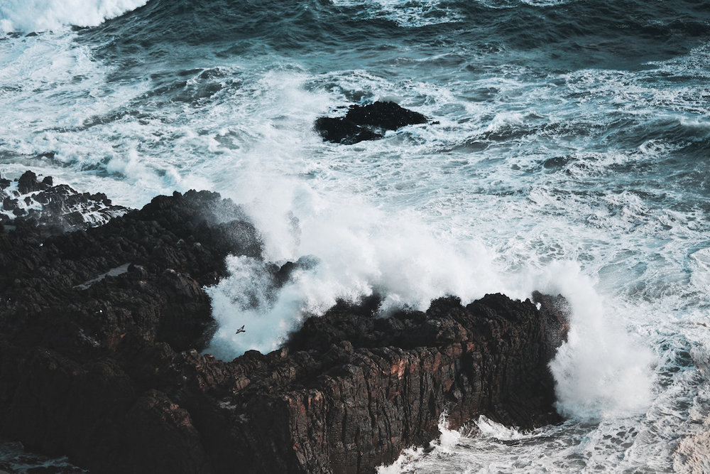 Nugget Point - Catlins - Rough Waves - NZ