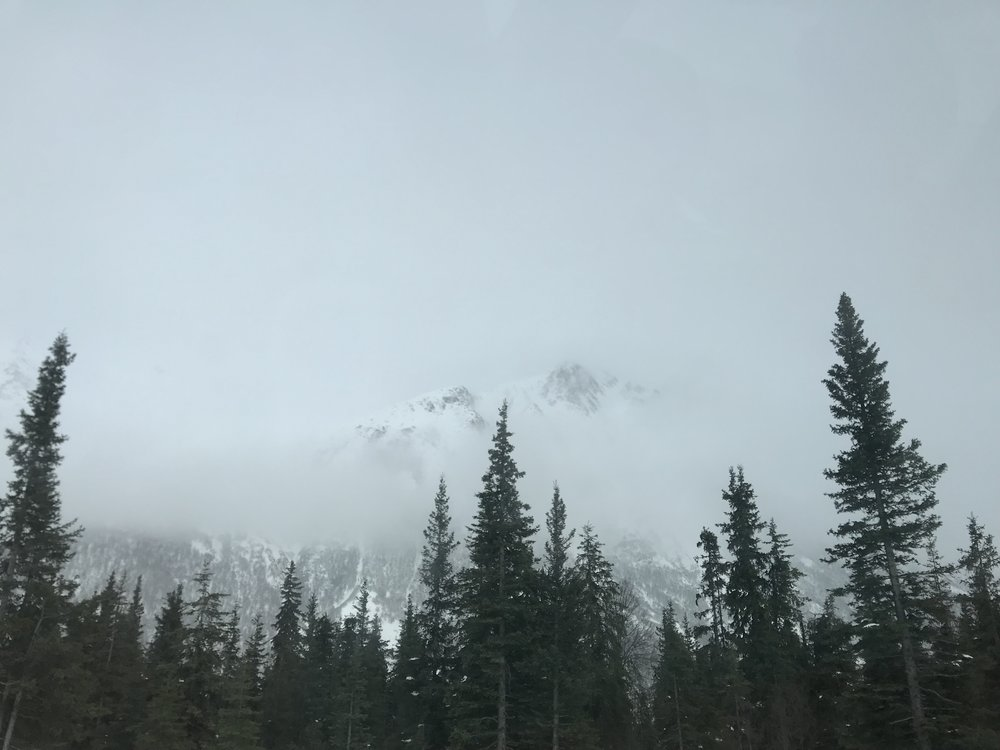 Somewhere in the interior of Alaska
