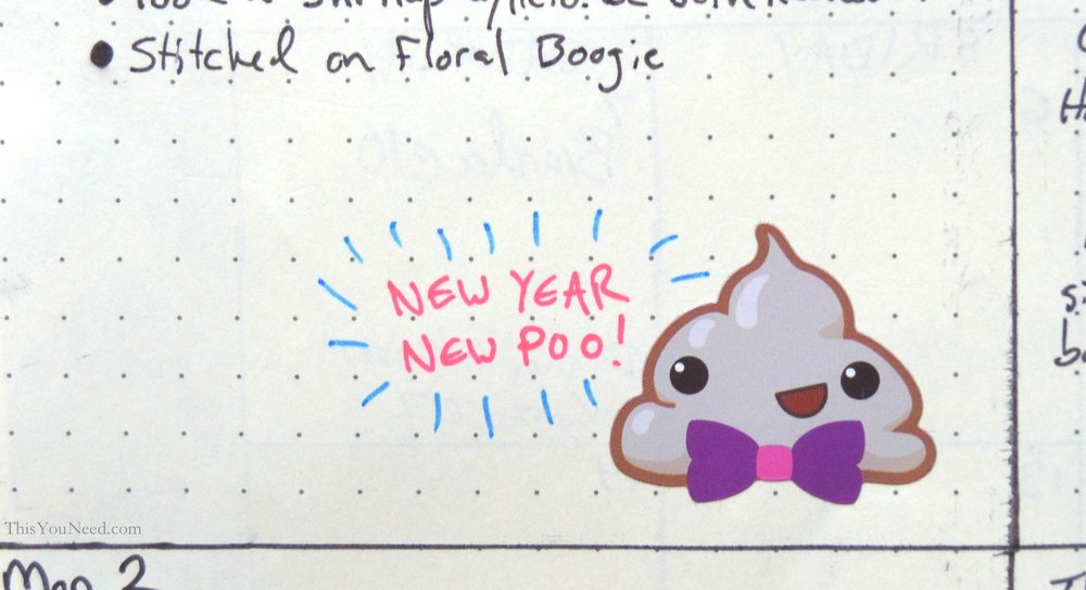 Bullet-Journal-Poo.jpg