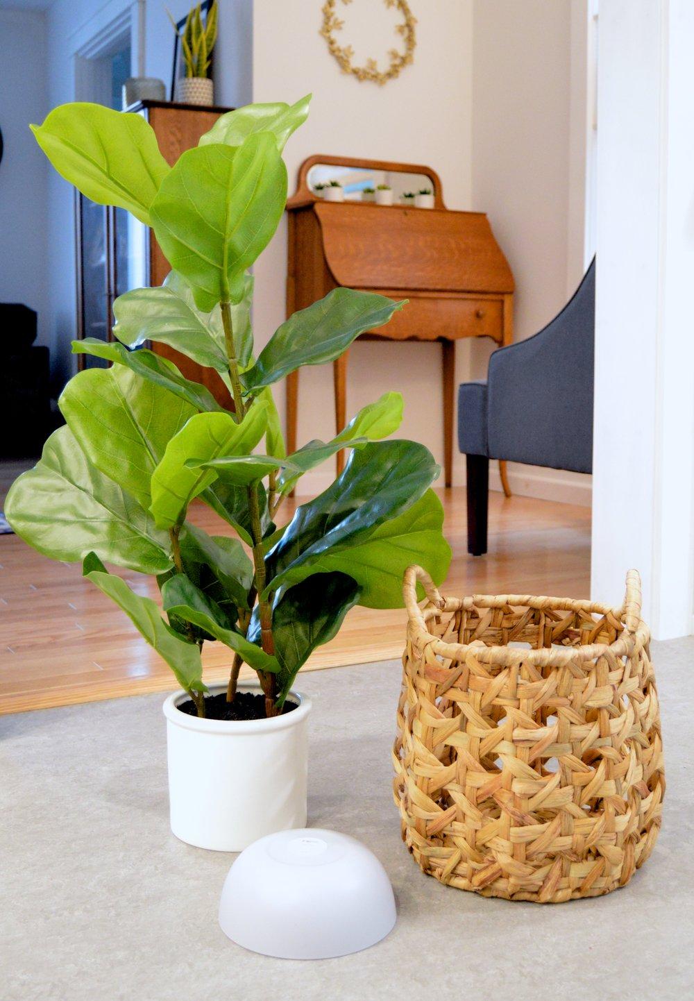 Plant Bowl Hack.jpg