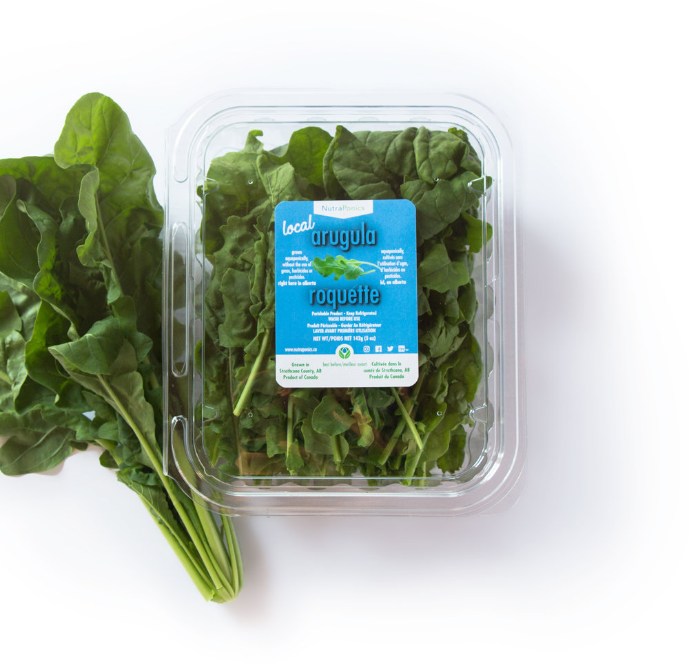 arugula - For those who love spicy greens, we have just the thing! Our peppery arugula is sure to satisfy even the most demanding arugula fanatic! Our natural growing process accentuates the peppery flavors inherent in this variety, making our arugula exceptionally sharp!