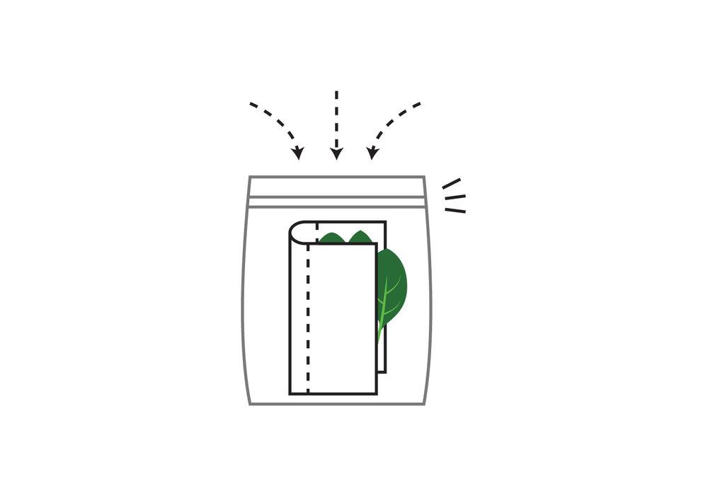 Final_spinach_3.jpg