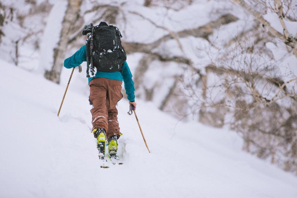 blake bekken skinning uphill backcountry skiing.jpg