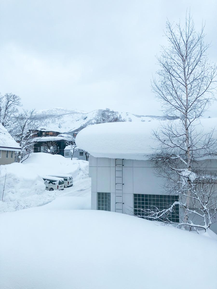 niseko snow berms.jpg