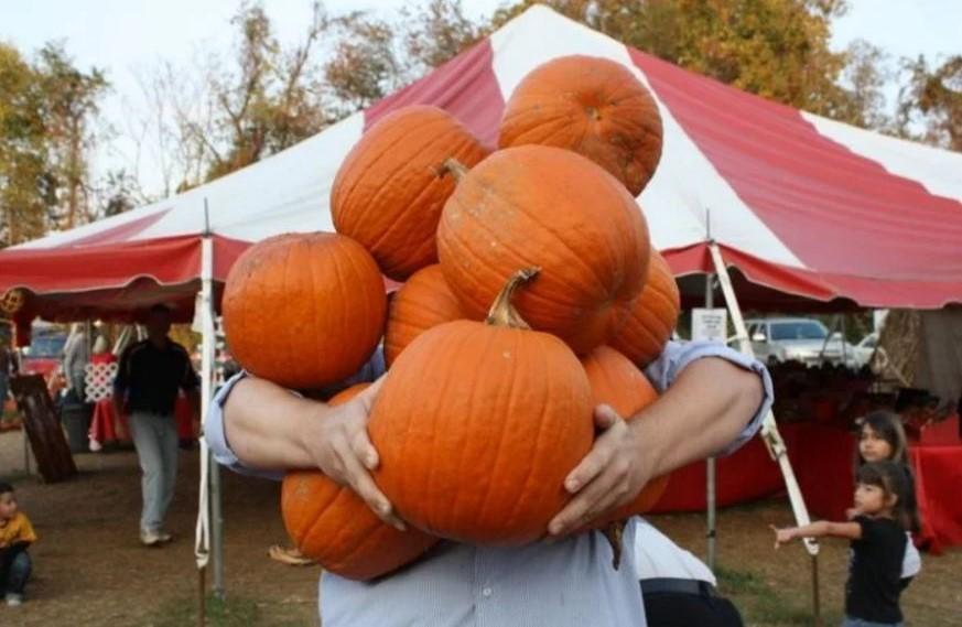 smith-pumpkin-lynchburg