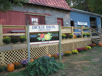 dickie-brothers-orchard