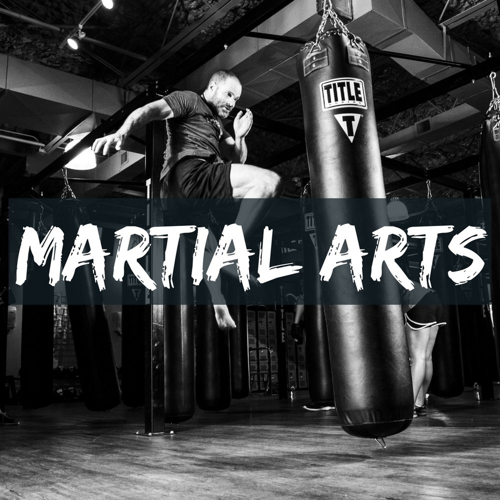 martial arts cover.jpg