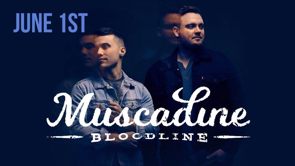 muscadine-bloodline