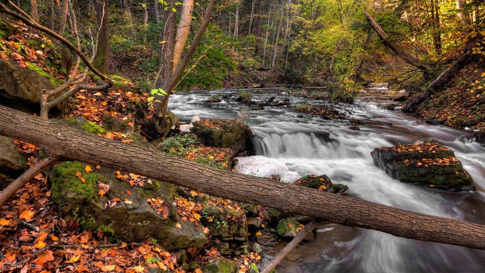 creek-environment-fall-149603.jpg